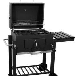 Barbecue ARIZONA